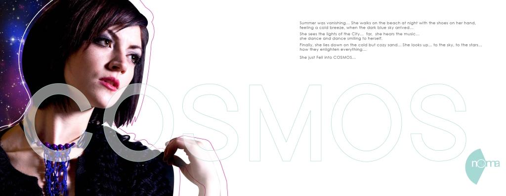 Cosmos_catalog_My_noma_2011_pqge_2